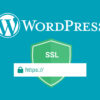 WordPress HTTPS LeDigitalizeur