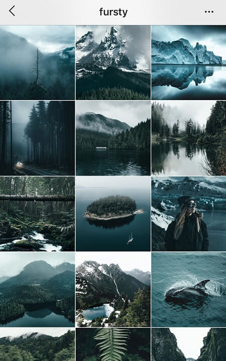 Feed Instagram bleu